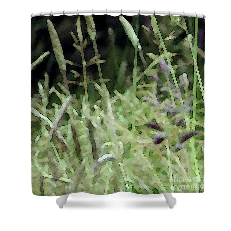Grass Shower Curtain featuring the photograph Breezy Summer 4 by Kim Tran