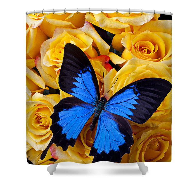 Black Shower Curtain Featuring The Photograph Bright Blue Butterfly By Garry Gay