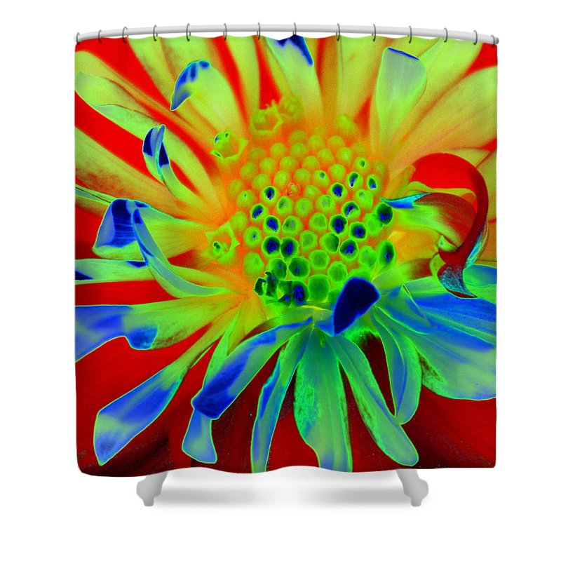 Diane Berry Shower Curtain featuring the painting Bright Flower by Diane E Berry