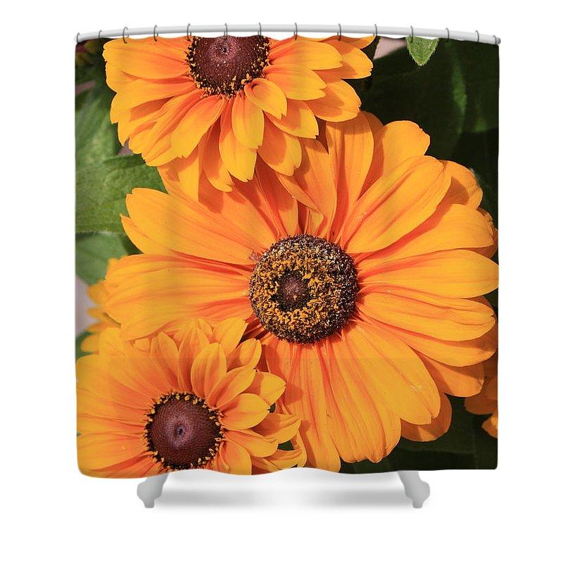 Orange Flowers Shower Curtain featuring the photograph Bright Orange Flowers by Carol Groenen