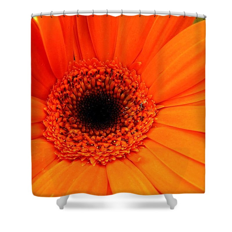 Flower Shower Curtain featuring the photograph Bright Red by Rhonda Barrett
