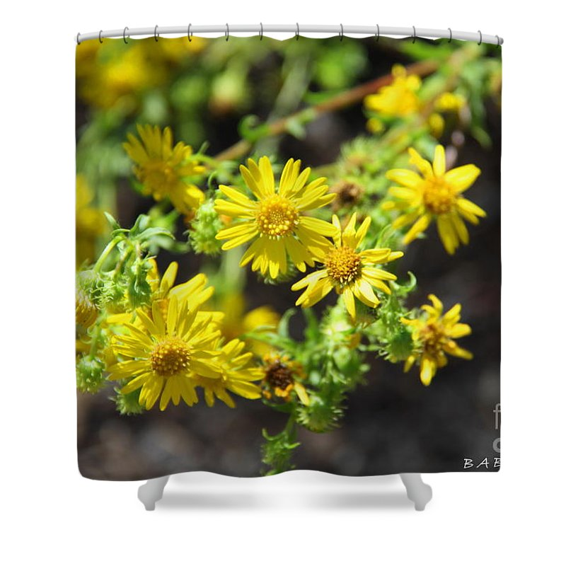 Yellow Flowers Shower Curtain featuring the photograph Brighter Than Sunshine by Barbara Bowen