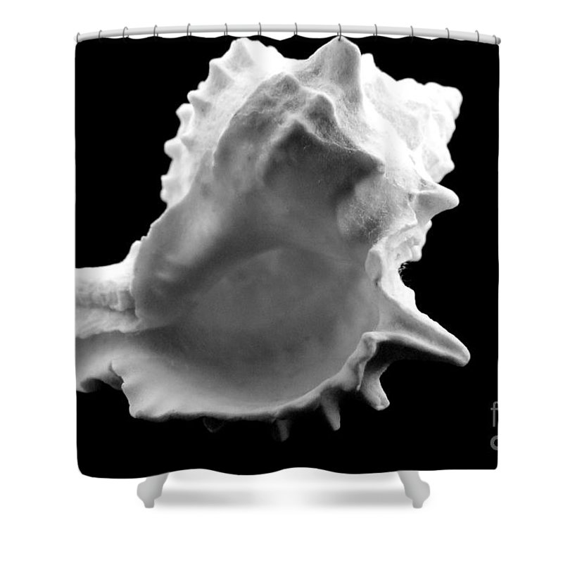 Mary Deal Shower Curtain featuring the photograph Brilliant Drupe In Black And White by Mary Deal