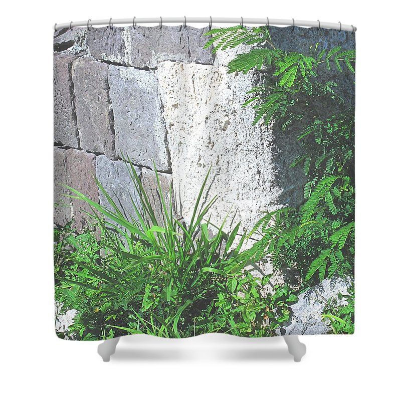 Brimstone Shower Curtain featuring the photograph Brimstone Wall by Ian MacDonald