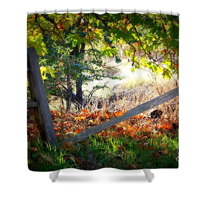Autumn Shower Curtain featuring the photograph Broken Fence In Sycamore Park by Carol Groenen