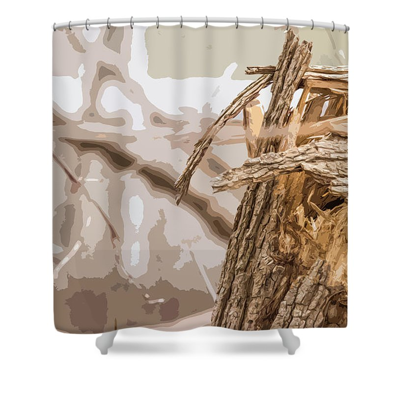 Tree Shower Curtain featuring the photograph Broken Tree Base by Carl Therriault