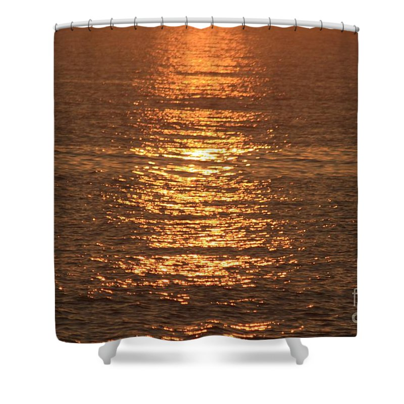 Ocean Shower Curtain featuring the photograph Bronze Reflections by Nadine Rippelmeyer