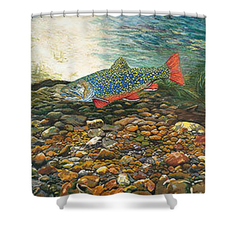 Nature Shower Curtain featuring the painting Brook Trout Art Fish Art Nature Wildlife Underwater by Baslee Troutman