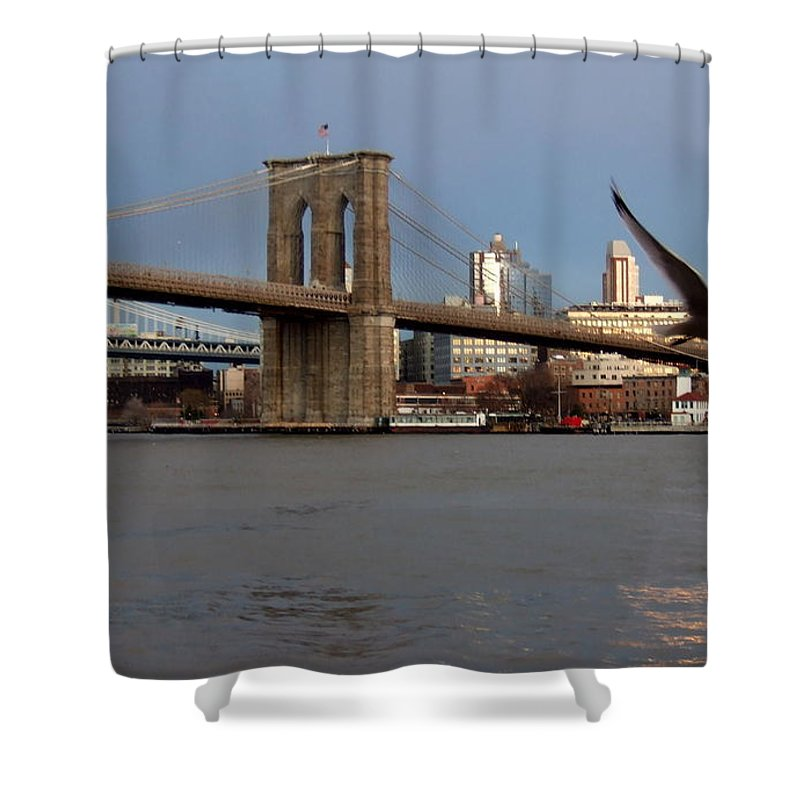 Brooklyn Bridge Shower Curtain featuring the photograph Brooklyn Bridge And Bird In Flight by Anita Burgermeister