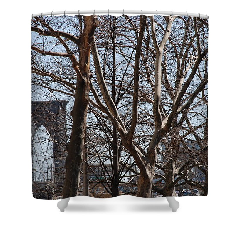 Architecture Shower Curtain featuring the photograph Brooklyn Bridge Thru The Trees by Rob Hans