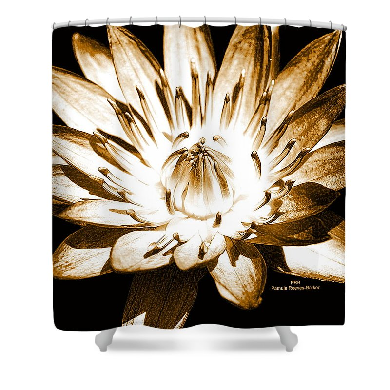Flower Shower Curtain featuring the mixed media Brown Beauty by Pamula Reeves-Barker