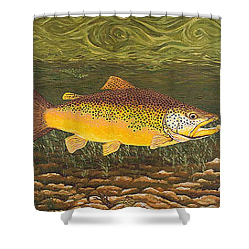 Art Print Prints Canvas Framed Giclee Fine Brown Trout Fish Angler Angling Fishing Fishermen Decor Shower Curtain featuring the painting Brown Trout Fish Art Print Touch Down Brown Trophy Size Football Shape Brown Trout Angler Angling by Baslee Troutman