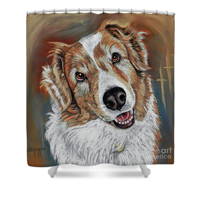 Commissioned Piece Of A Red And White Australian Shepard With That Love Me Look Upon His Face You Just Want To Hug Him Shower Curtain featuring the pastel Brumbee by Cat Culpepper