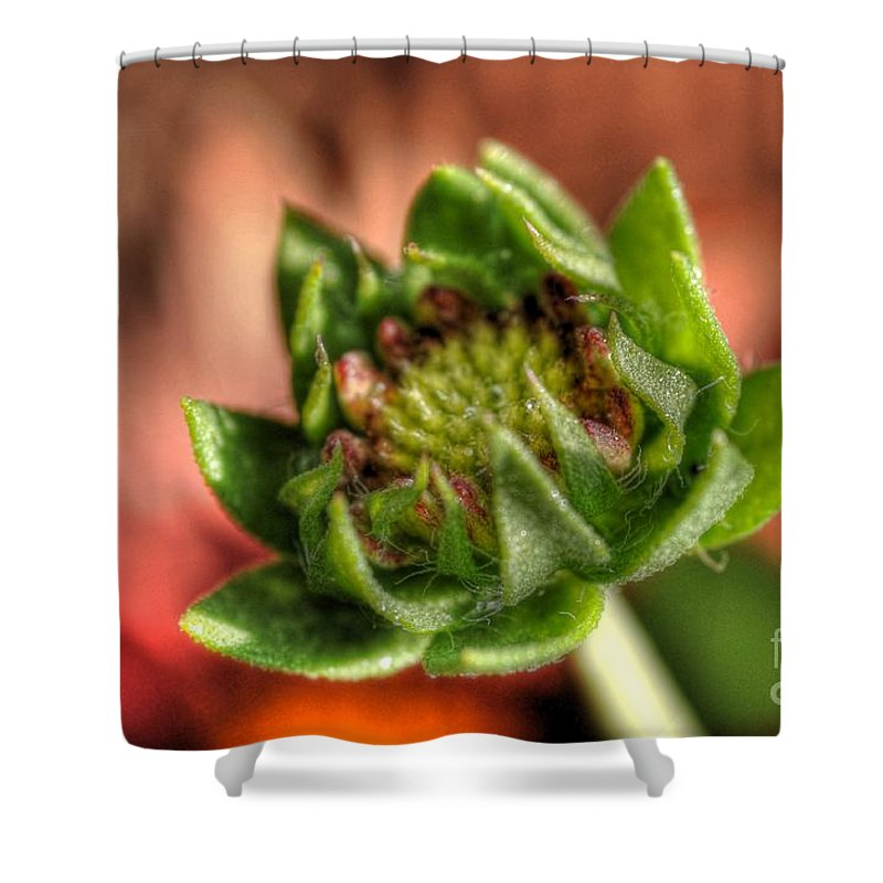 Bud Shower Curtain featuring the photograph Bud by Chris Fleming