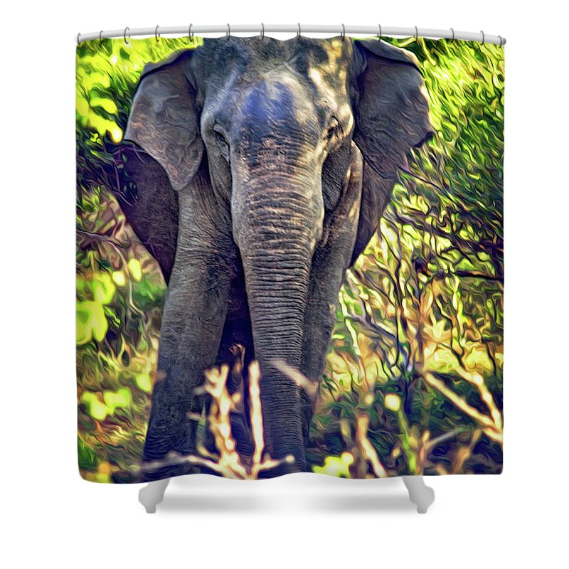 Nepal Shower Curtain featuring the photograph Bull Elephant Threat by Steve Harrington