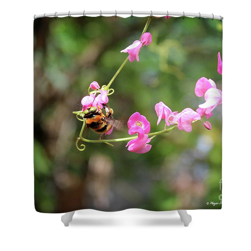 Keywords Shower Curtain featuring the photograph Bumble Bee1 by Megan Dirsa-DuBois