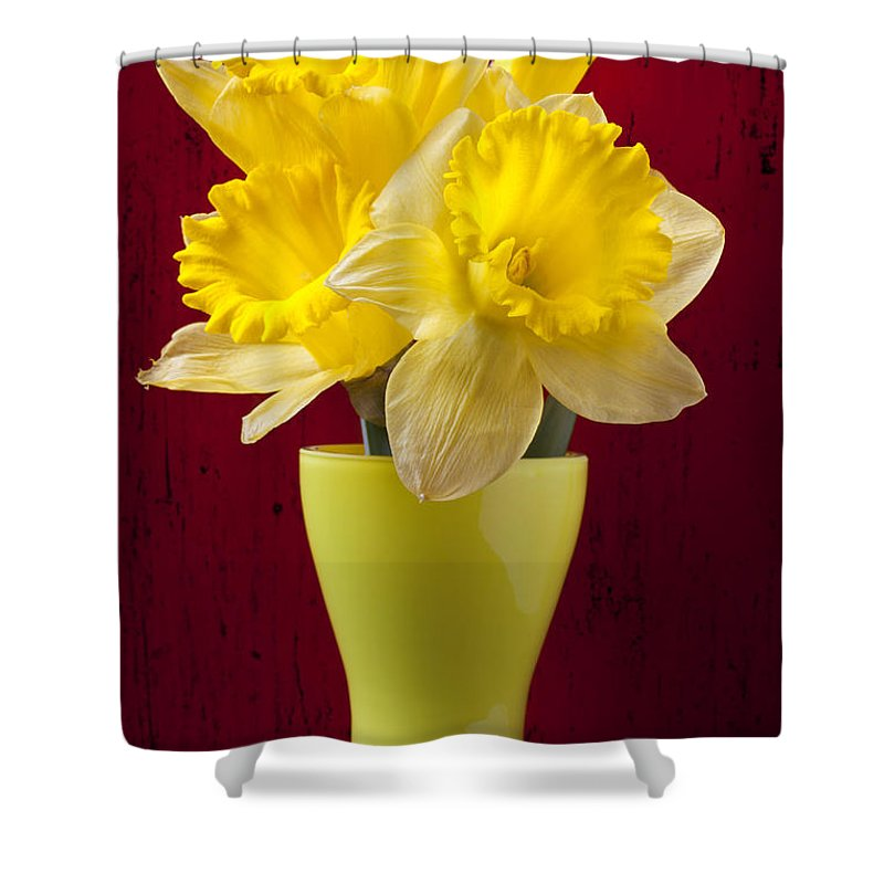 Yellow Shower Curtain featuring the photograph Bunch Of Daffodils by Garry Gay