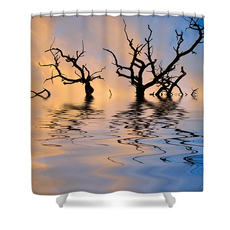 Original Art Shower Curtain featuring the photograph Slowly Sinking by Jerry McElroy