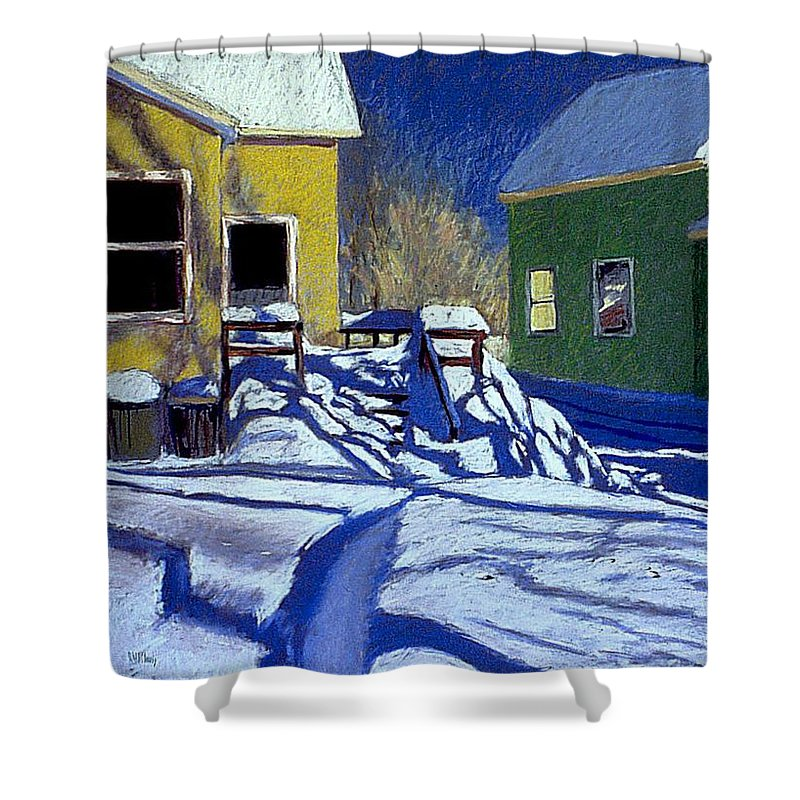 Landscape Shower Curtain featuring the painting Buried Backyard by Mary McInnis