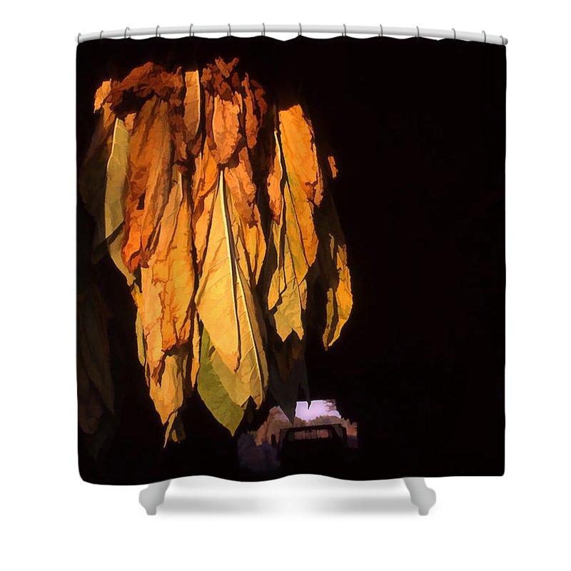 Farmlife Shower Curtain featuring the photograph Burley Barn by Sam Davis Johnson
