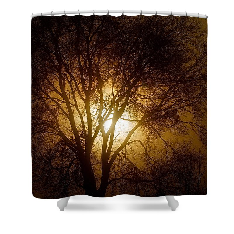 Scenic Shower Curtain featuring the photograph Burning Bush by Mark Lemon