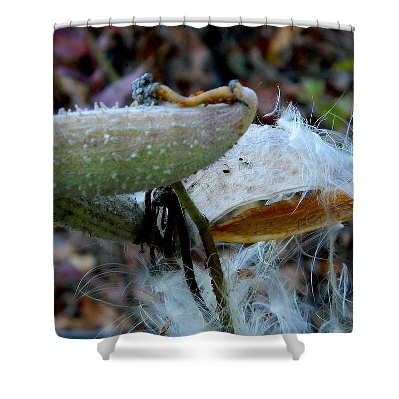 Pod Shower Curtain featuring the photograph Busting Out by Arlane Crump
