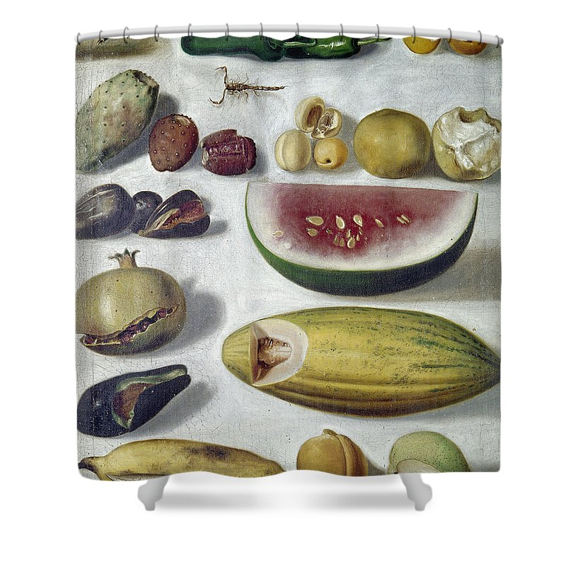 1874 Shower Curtain featuring the photograph Bustos: Still Life, 1874 by Granger