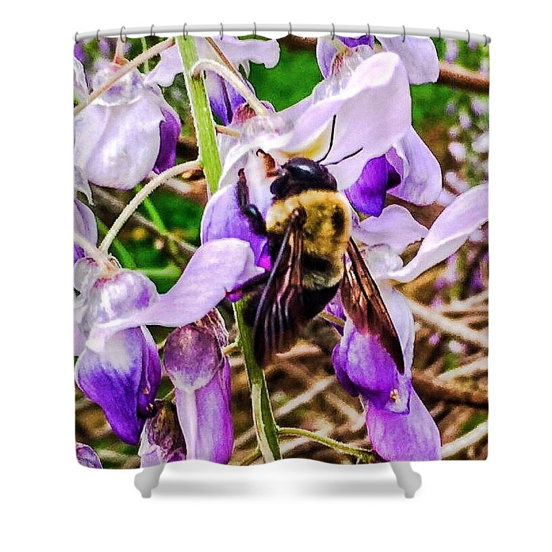 Bee Shower Curtain featuring the photograph Busy Bee by Lisa Dennae