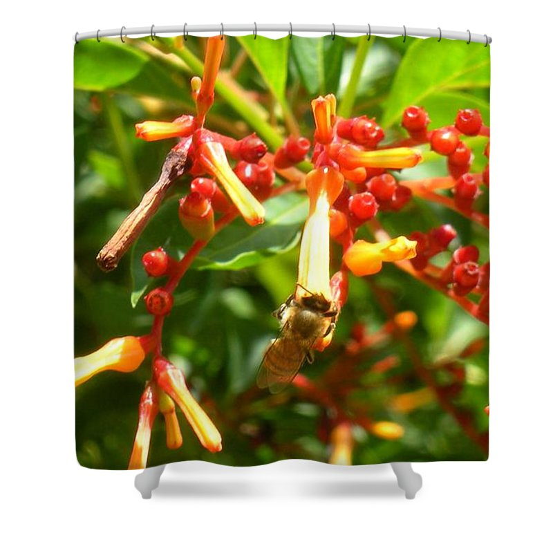 Bee Shower Curtain featuring the photograph Busy Bee by Maria Bonnier-Perez