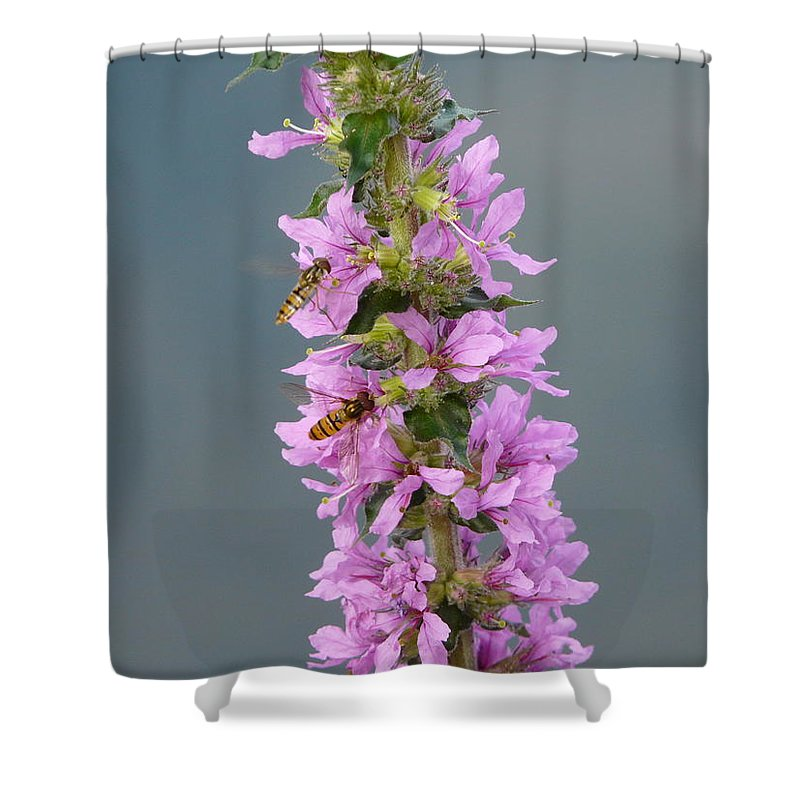 Flower Shower Curtain featuring the photograph Busy Flower by Valerie Ornstein