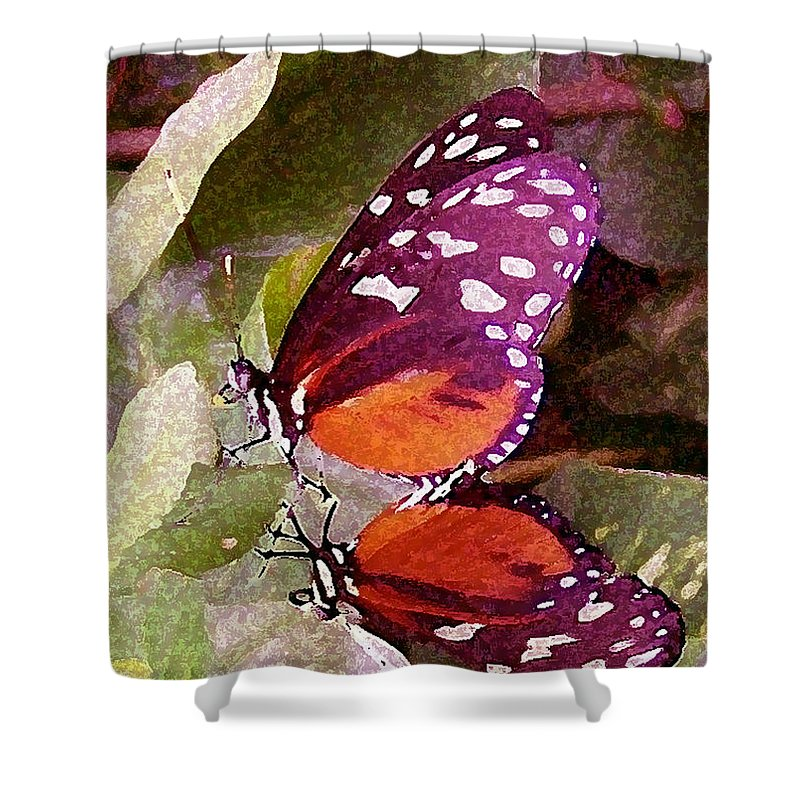 Butterflies Shower Curtain featuring the photograph Butter Mates by Vallee Johnson