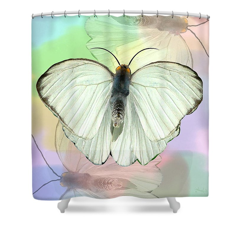 Butterfly Shower Curtain featuring the photograph Butterfly, Butterfly by Rosalie Scanlon