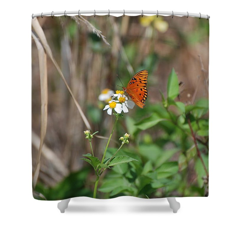 Butterfly Shower Curtain featuring the photograph Butterfly Flower by Rob Hans