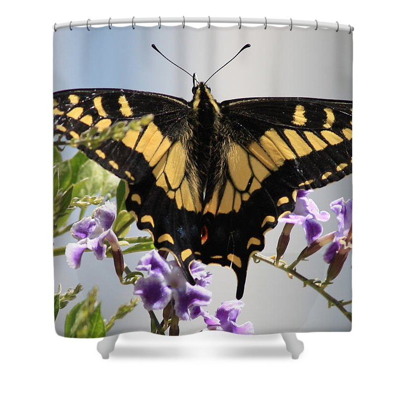Butterfly Shower Curtain featuring the photograph Butterfly In My Garden by Carol Groenen