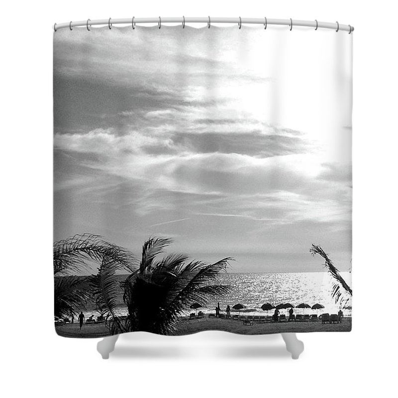 Palm Trees Shower Curtain featuring the photograph Bw Beach by Ceil Diskin