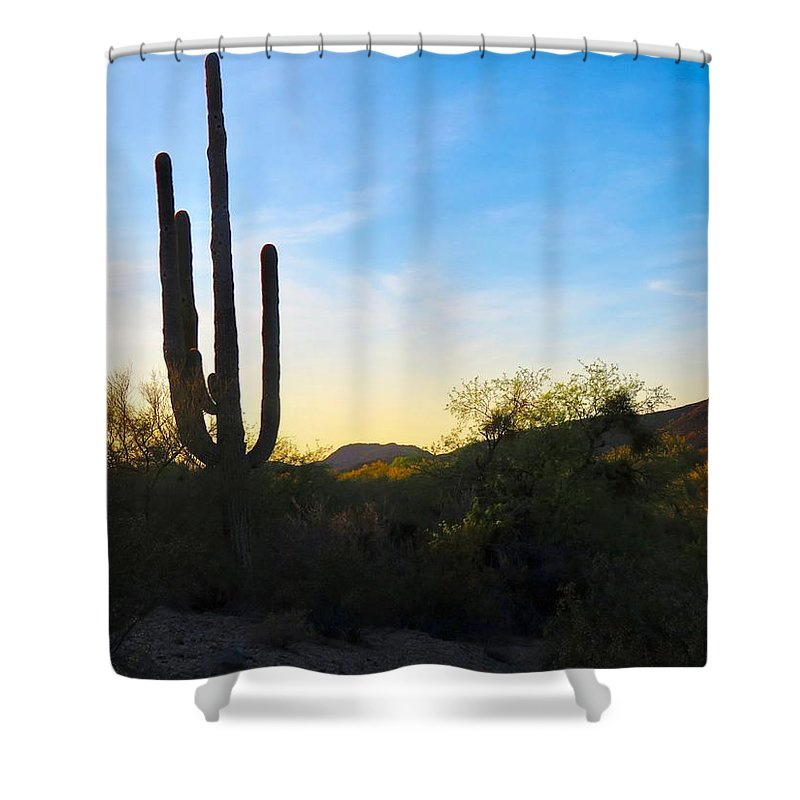 Arizona Shower Curtain featuring the photograph By The Vekol Wash by Judy Kennedy