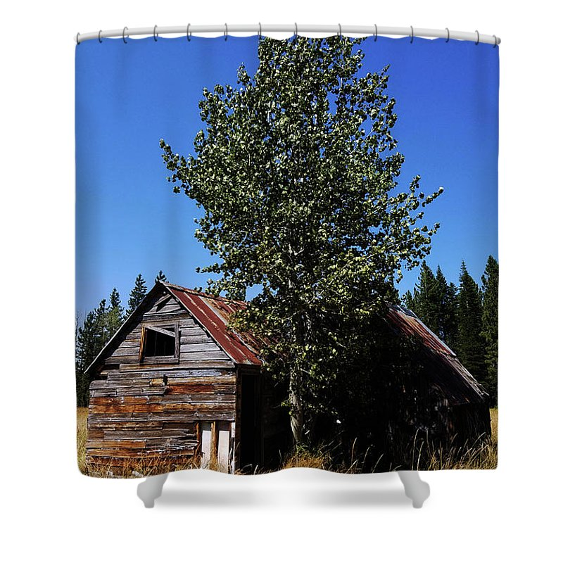 Dilapidated Shower Curtain featuring the photograph Cabin In The Meadow by Aaron James