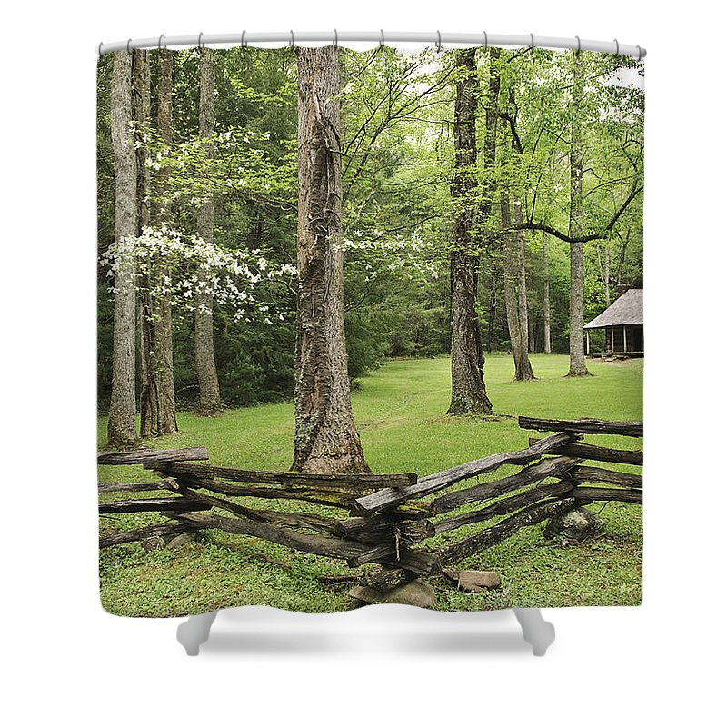 Cabin Shower Curtain featuring the digital art Cabin by Zia Low