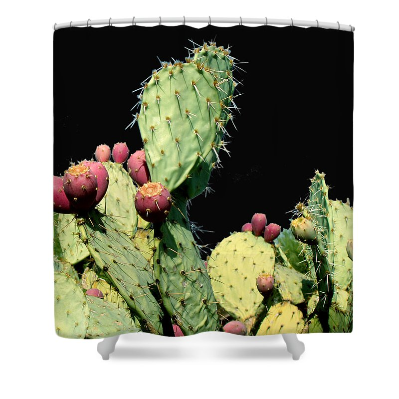 Cactus Shower Curtain featuring the photograph Cactus Two by Wayne Potrafka