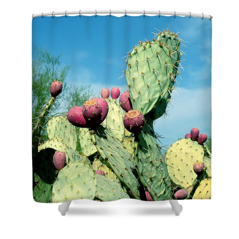 Cactus Shower Curtain featuring the photograph Cactus by Wayne Potrafka