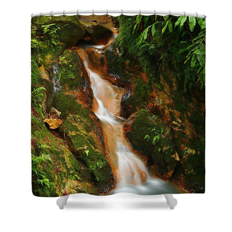 Azores Shower Curtain featuring the photograph Caldeira Velha Park by Gaspar Avila