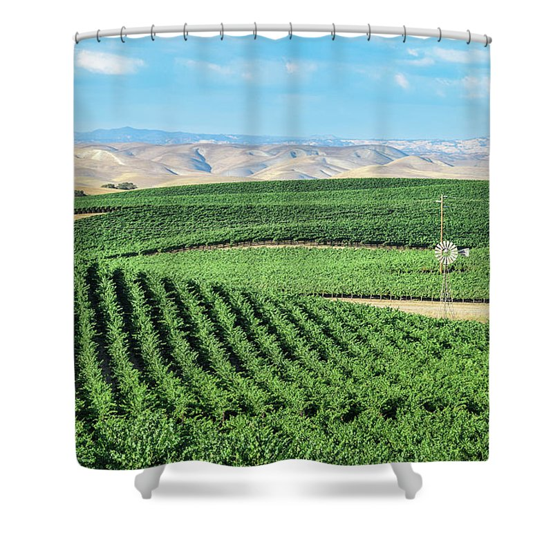 Agriculture Shower Curtain featuring the photograph California Vineyards 1 by David A Litman