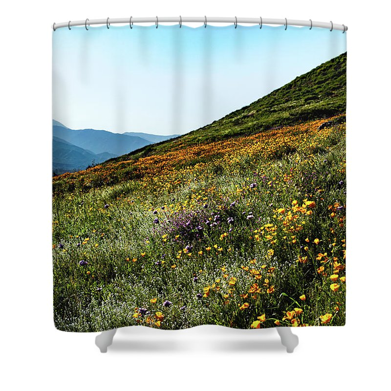Poppy Shower Curtain featuring the photograph California Wildflowers by Canaan John