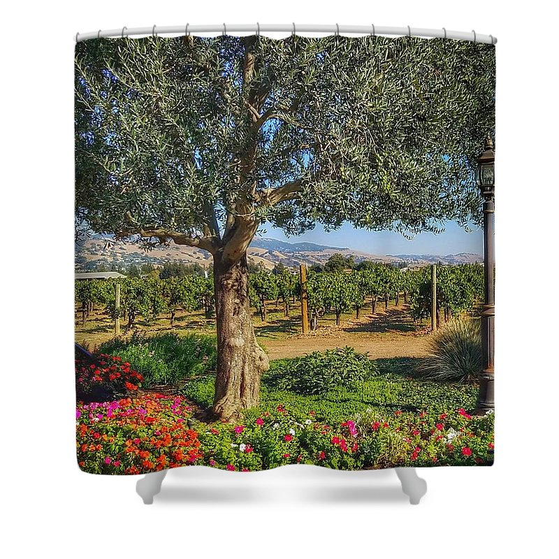 Morgan Hill Shower Curtain featuring the photograph California Wine Country by Mary Capriole