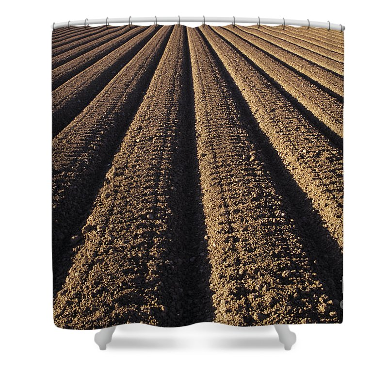 Agriculture Shower Curtain featuring the photograph Califronia, View by Larry Dale Gordon - Printscapes