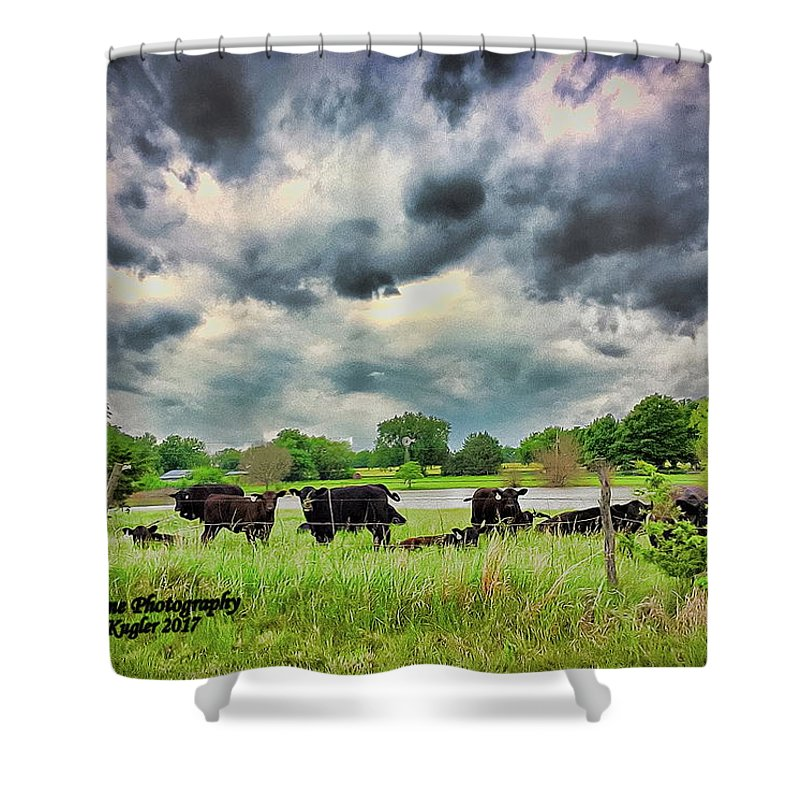 Cattle Shower Curtain featuring the photograph Calm Before The Storm by Marty Kugler