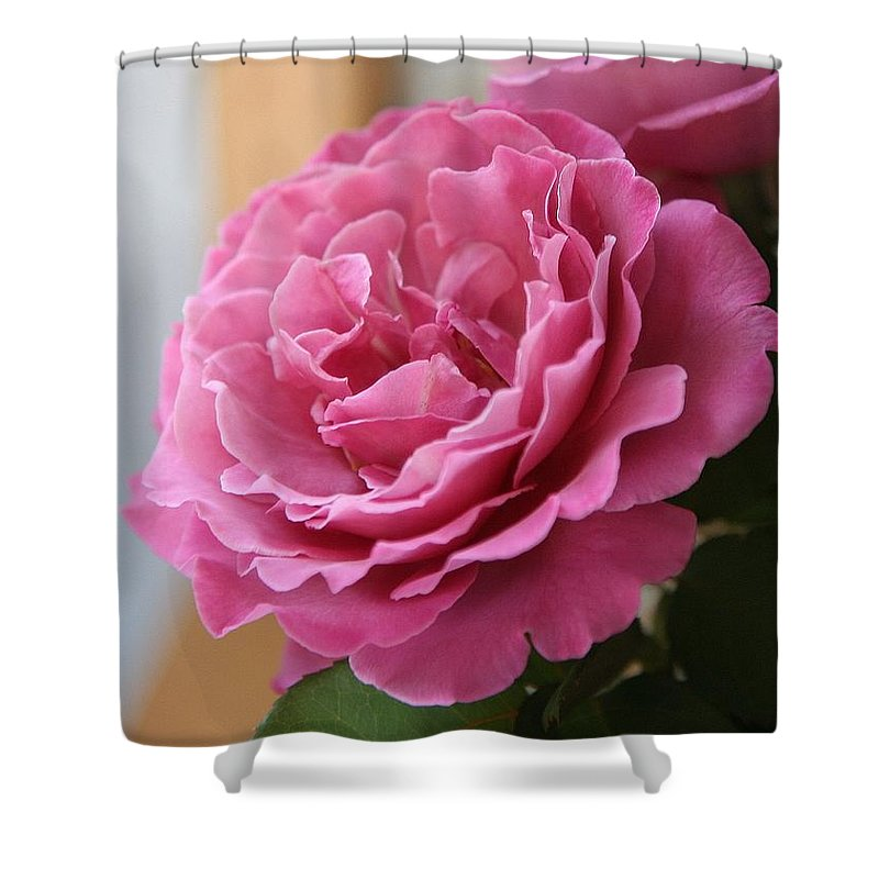 Shower Curtain featuring the photograph Calming by Luciana Seymour