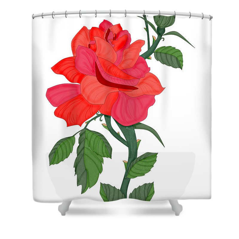 Red Rose Shower Curtain featuring the painting Calypso Rose by Anne Norskog