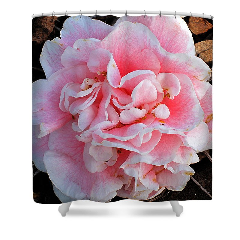 Photography Shower Curtain featuring the photograph Camellia Flower by Susanne Van Hulst