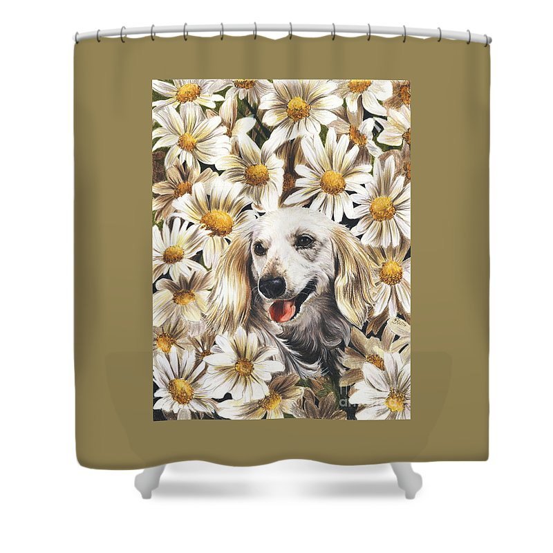 Dachshund Shower Curtain featuring the drawing Camoflaged by Barbara Keith